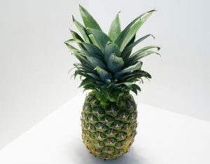 Pineapples Increase Semen Volume