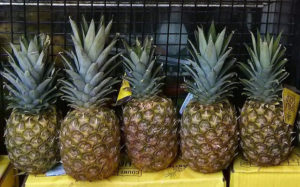 Pineapples improve taste of semen